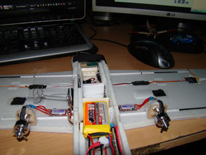 /theme/GS-Micro-Flyer/twin-motor-esc-turnigy