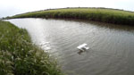 /theme/mini tow plane/11-water-photo