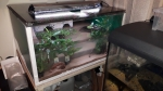 /theme/200l aquarium/19 tank corrugated lid